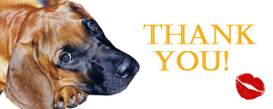 Thank You Puppy by FractalCaleidoscope