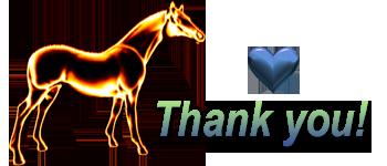 Thank You Paardje