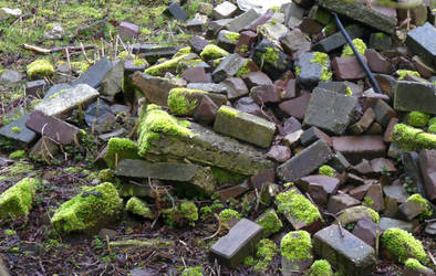 Stock, and old stone pile