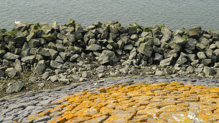 Stock Texture- boulders at the Northsea dyke