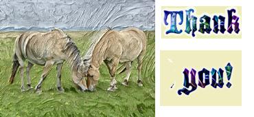 Thanls Paarden Weide