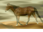 Stock A lone horse in the desert. by FractalCaleidoscope