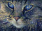 Pretty cat by FractalCaleidoscope