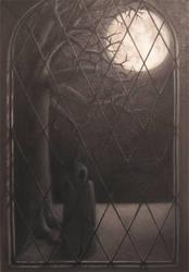 Window by Maylar