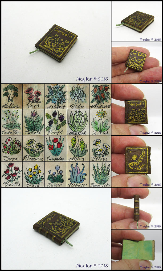 Herbalis, Miniature Herbarium by Maylar