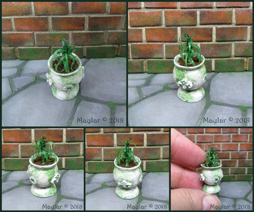 Magic Plant Miniature - 12 Weeperl by Maylar