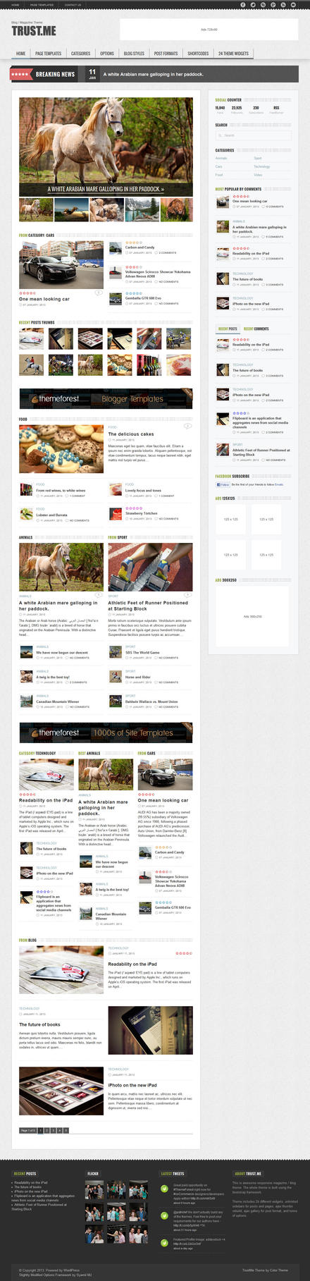 TrustMe - Responsive Wordpress Blog Theme by ZERGEV