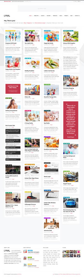 Lynx - Retina Responsive Wordpress Theme - Blog