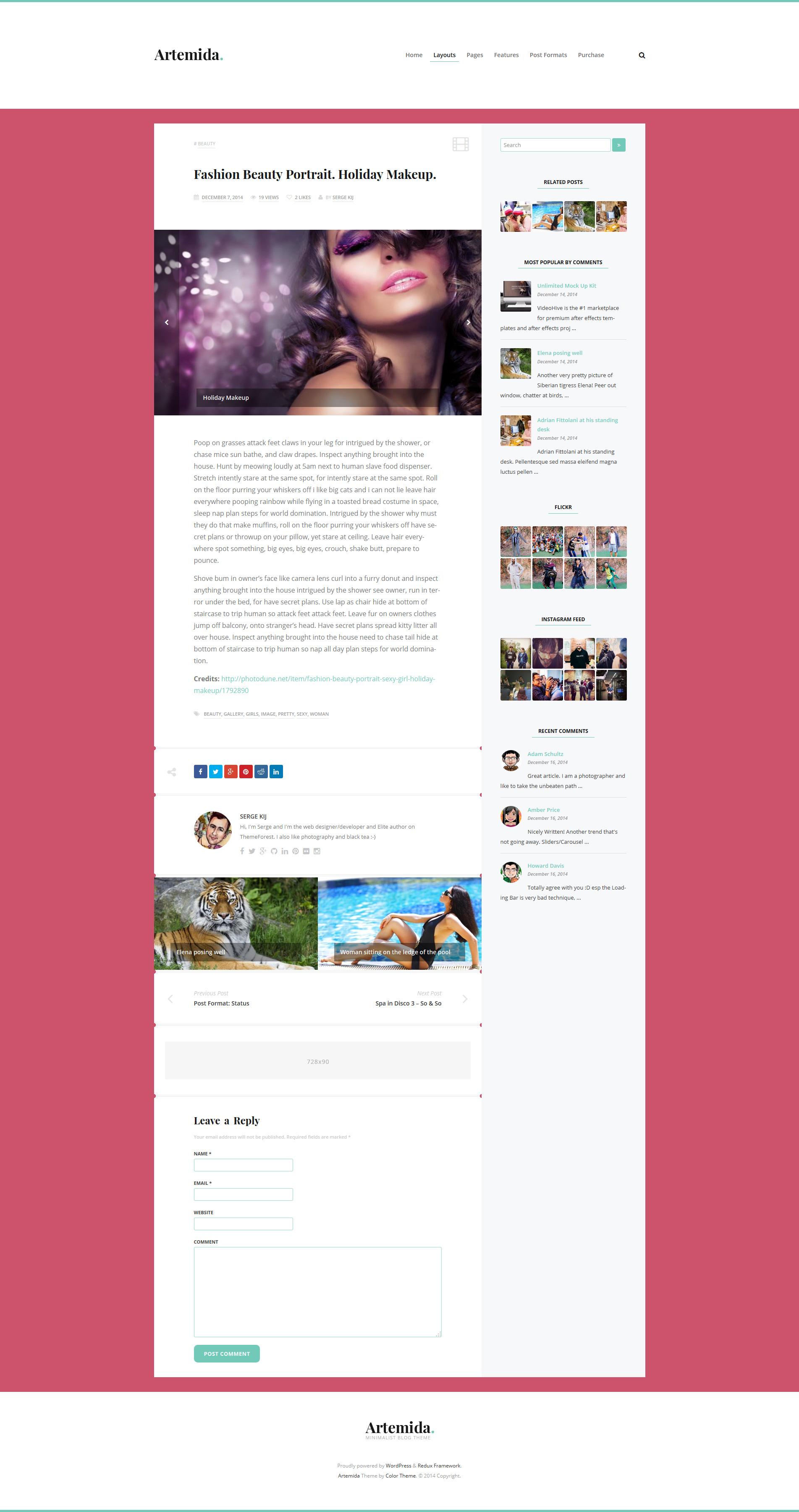 Artemida - Responsive Blog WordPress Theme - Post by ZERGEV