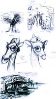 Random sketchs by Crumies