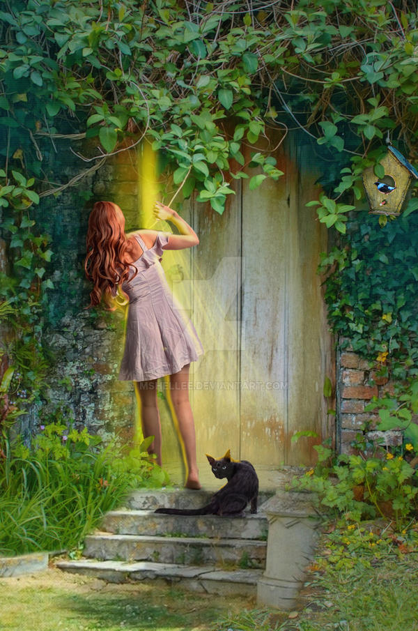 Hidden Door by mshellee