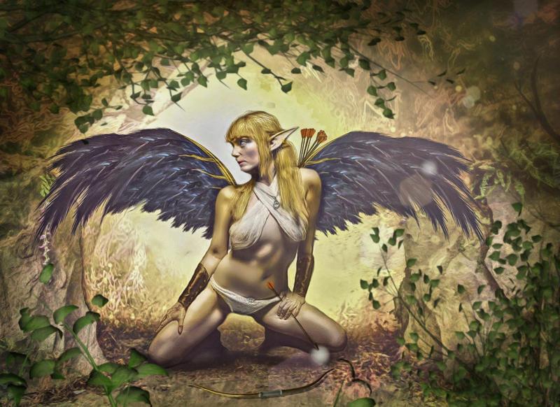 Elf Warrior by mshellee