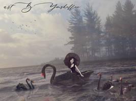 Black Swan by mshellee