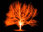 Burning tree by beingstoned