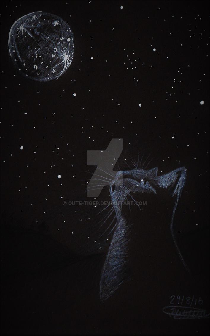 Moonlit night by cute-tiger