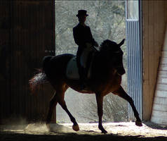Silhouette of a horse II by attlid