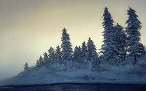 Alaskan Morning by Temiree