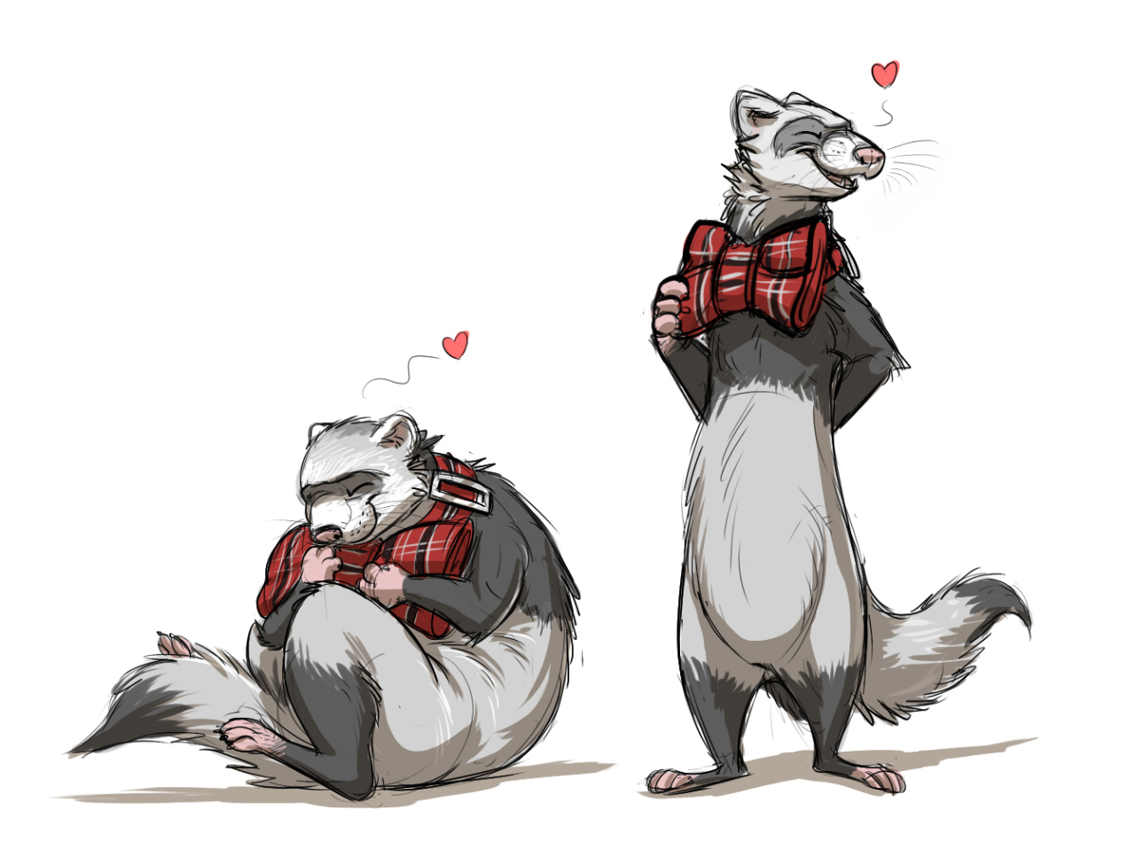 proud bow tie ferret by temiree