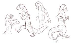 Gecko Sketches