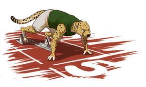Cheetah on the Starting Blocks