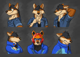 Commission: Pedro Lopaws Expression Sheet by Temiree