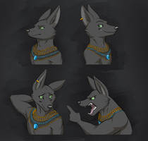 Commission: Anubis's Son Expression Sheet