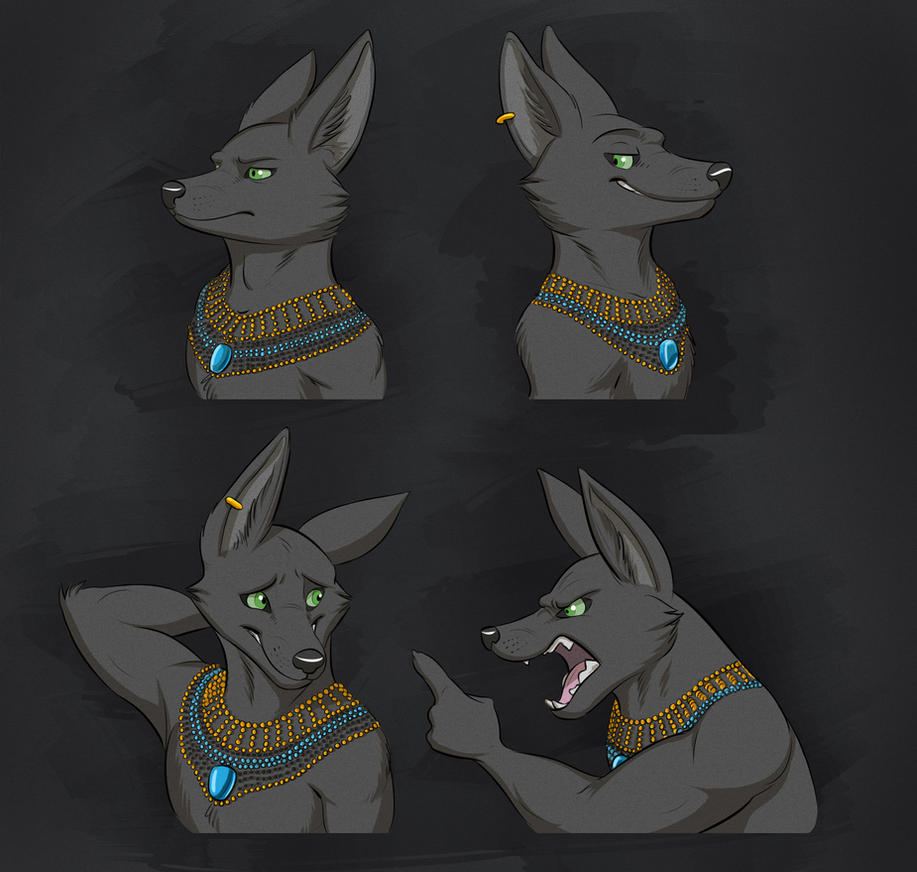 Commission: Anubis's Son Expression Sheet by Temiree