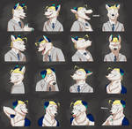 Commission: Kags's Expression Sheet
