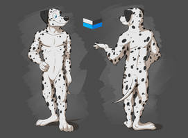 Commission: Rico's Reference Sheet by Temiree