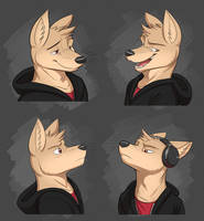 Commission: Funky's Expression Sheet by Temiree