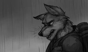 Rainy Wolf