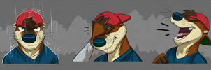Commission: Cooper's Expression Sheet by Temiree
