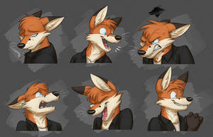Commission: Robin's Expression Sheet
