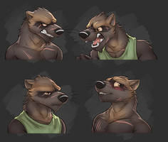Commission: Lucas Blackclaw's Expression Sheet