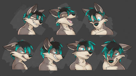Commission: Takkin's Expression Sheet #2 by Temiree