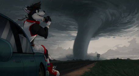 Commission: Friskecrisps (Storm Chasing) by Temiree