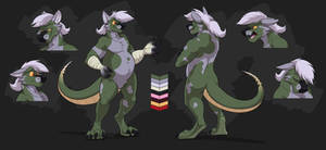 Commission: Blitzeo's Reference Sheet