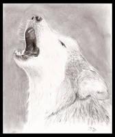 Howl by Temiree