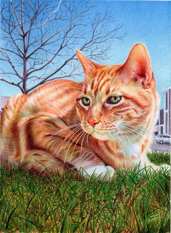 Ginger Cat - Ballpoint Pen by VianaArts