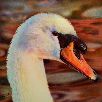 Swan Head - Bic Ballpoint Pen by VianaArts