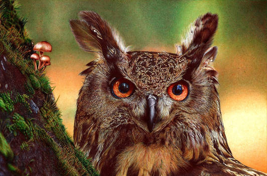 Eurasian Eagle-Owl - Ballpoint Pen by VianaArts