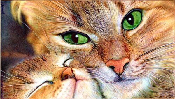 Mother cat and Kitten - Ballpoint Pen by VianaArts