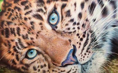 Leopard - Ballpoint Pen by VianaArts