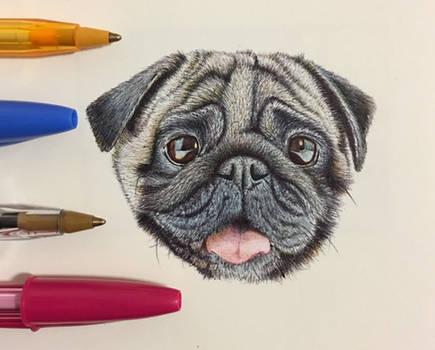 Pug face - Ballpoint Pen