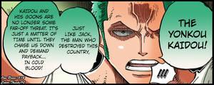 One Piece 814 Zoro's Speech