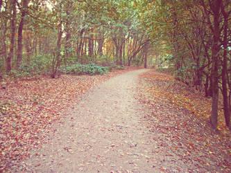Path in the wild by bulletproooof