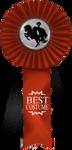 EP Ribbon ~ Best Costume by MatrixPotato