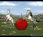SHH Spring Foal Event: What is it!?