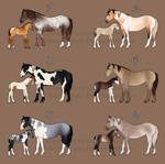 Mare and Foal Adopts 2 CLOSED