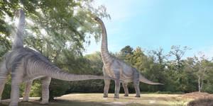 A couple of brachiosaurus eating